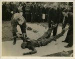 Anonymous, German civilians place the exhumed body of a murdered